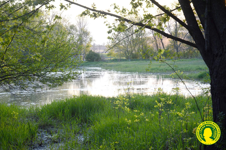 Izaak Walton Wetlands - photo of wetland